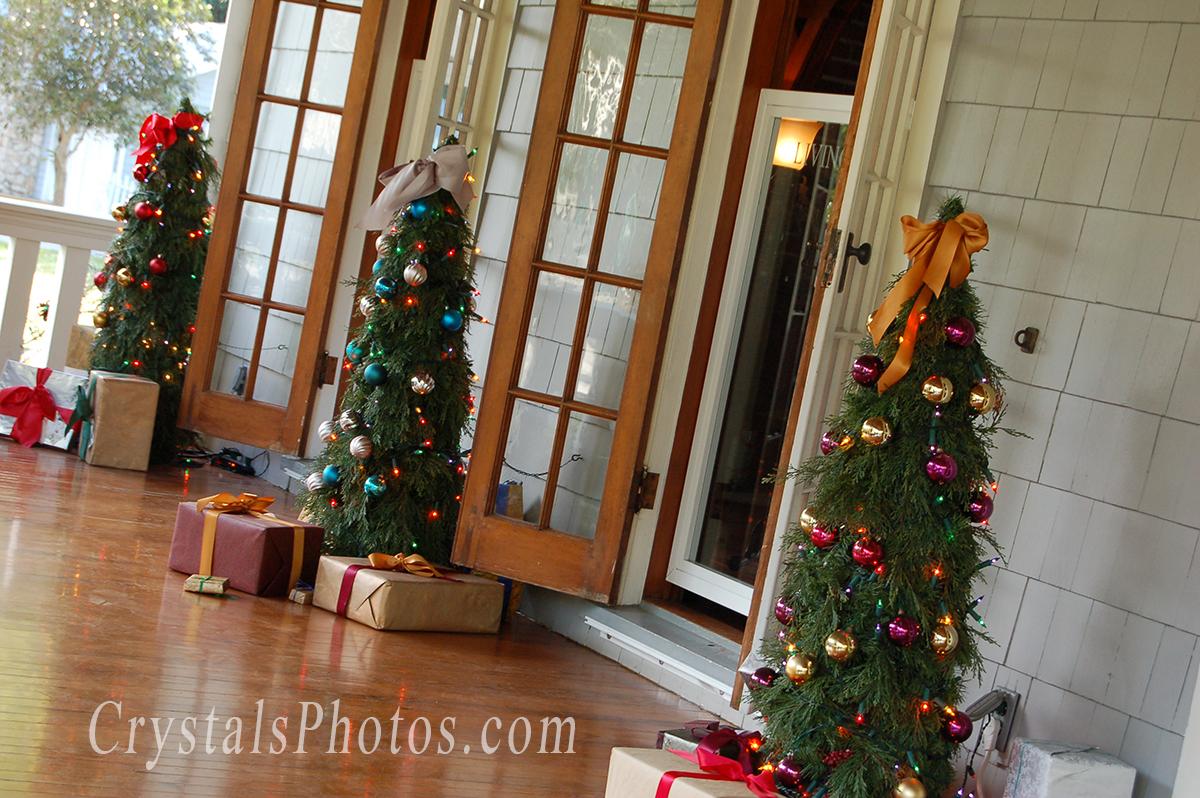 Edison @ Christmas